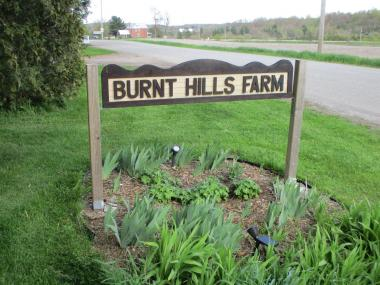 Burnt Hills Farm
