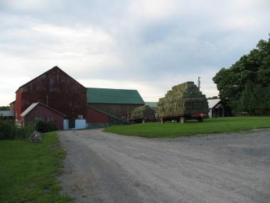Sonset Farm